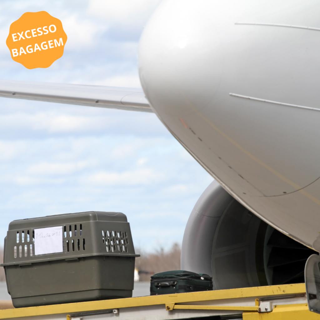 imagem para exemplo de transporte de animais como excesso de bagagem