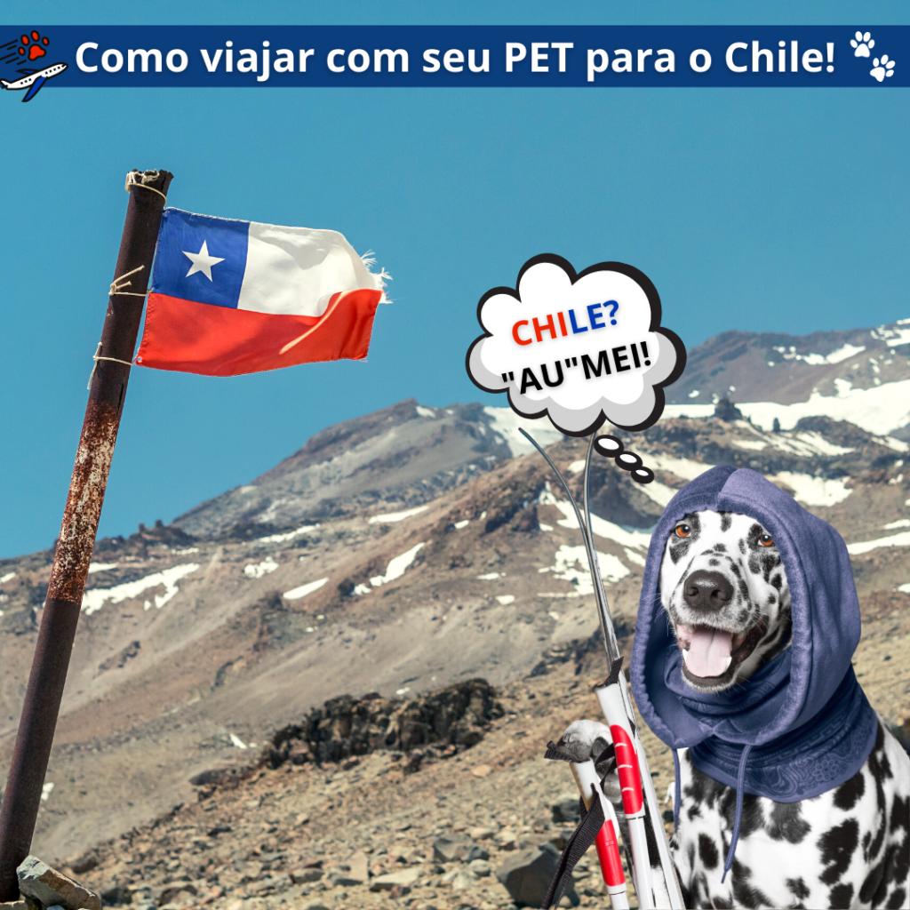 Viajar com cachorro ou gato para o Chile